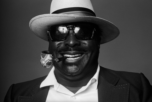ALBERT KING by NORMAN SEEFF