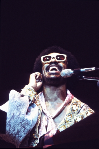 STEVIE WONDER by CARLO MASSARINI