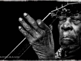 B.B. KING, 2012 by CRISTINA ARRIGONI